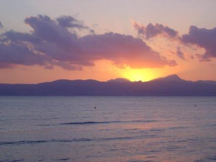 Sonnenuntergang am Ballermann - Ballermann 6