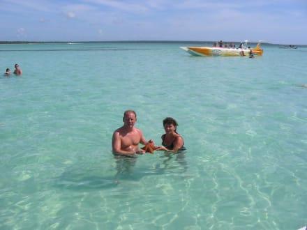 die Natur ist noch in Ordnung - Isla Saona