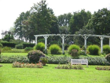 Park Rosenhöhe 11 - Rosenhöhe Park