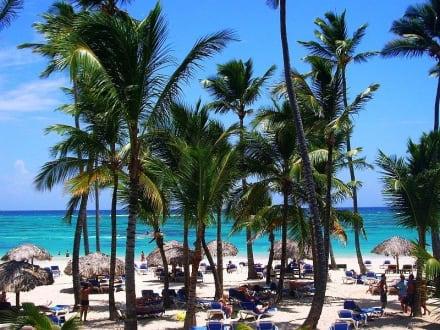 Ausblick Terrasse - Hotel Occidental Grand Flamenco Punta Cana
