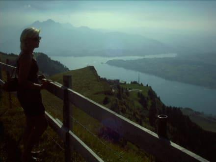 Schweiz - Rigi - Vierwaldstätter See - Vierwaldstättersee