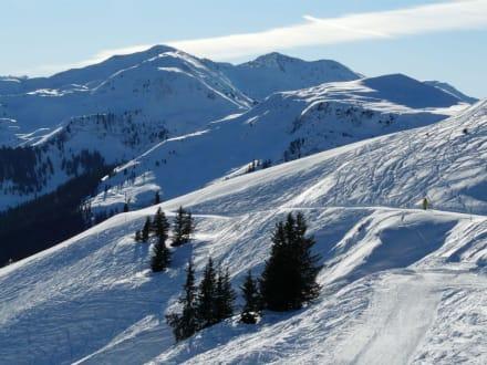 Skigebiet Schatzberg - Skigebiet Schatzberg