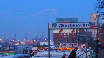 Fischmarkt - Hamburger Fischmarkt