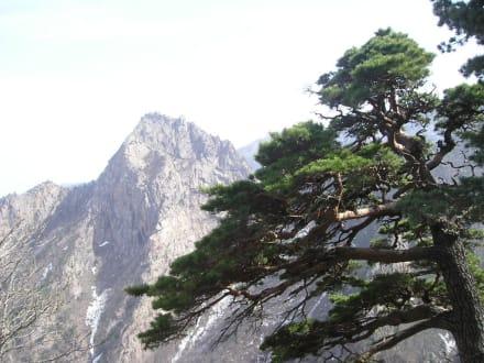 Bergstille - Seoraksan Nationalpark