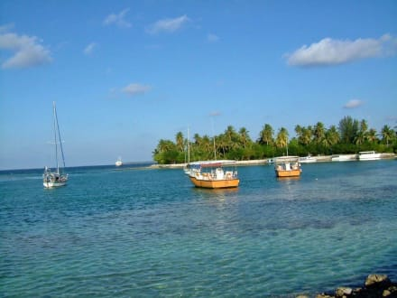Schnorchelboote - Inselhopping Addu Atoll