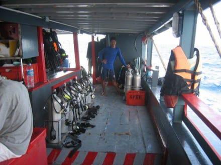 Auf dem Tauchschiff vom DivePoint - Tauchbasis Dive Point Koh Tao
