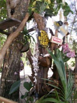"""""""Eingangsbereich"""" - Palm Beach Restaurant"""