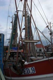 Der Hafen von Fedderwardersiel - Hafen Fedderwardersiel