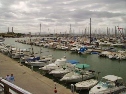 Der Hafen - Yachthafen Alcudia