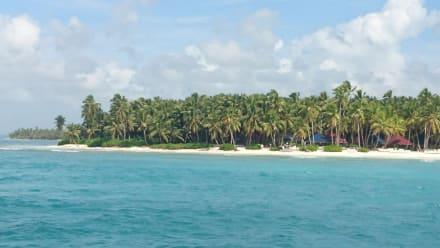 Ausflug Isla Saona - Isla Saona