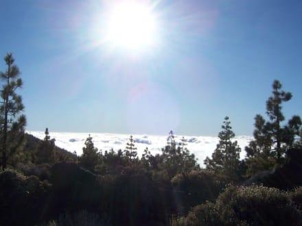 über den Wolken im Nationalpark Pico del Teide - Teide Nationalpark