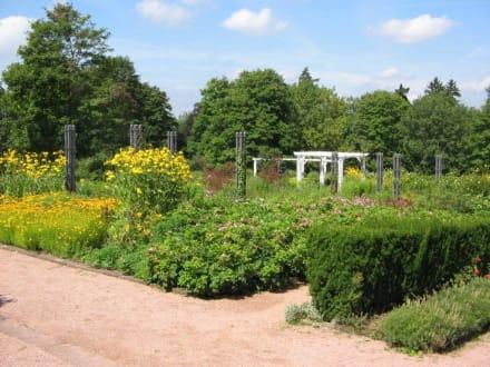 Park Rosenhöhe 6 - Rosenhöhe Park