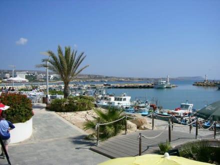 Hafen von Ayia Napa - Fischereihafen Ayia Napa/Agia Napa