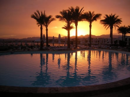 Sonnenuntergang am Pool - Hotel Sharm Resort