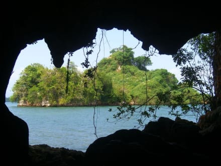 Vogelinsel - Los Haitises Nationalpark