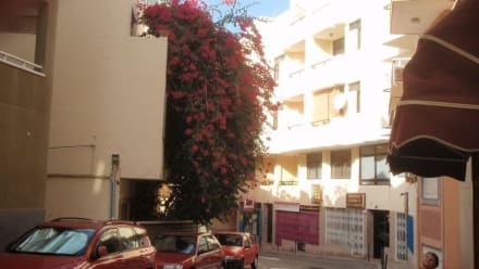 Stadt/Ort - Playa del Medano