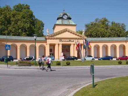 Thermalbad - Bad Vöslau