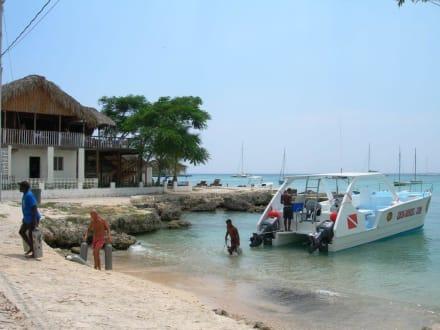 Der Hafen von Bayahibe - Unterwasser