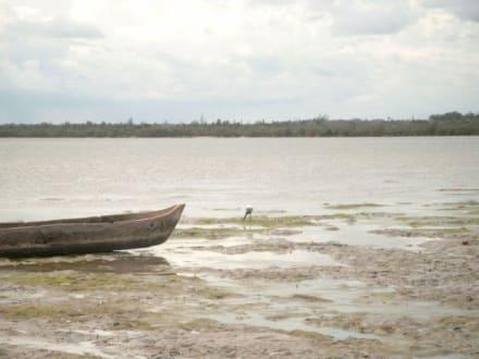 Mida Creek bei Dabaso, gegenüber Insel Kirepwe - Strand Watamu