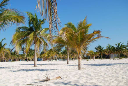 Playa Sirena - Playa Sirena
