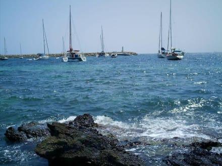 Strandabschnitt des Marinelands - Marineland