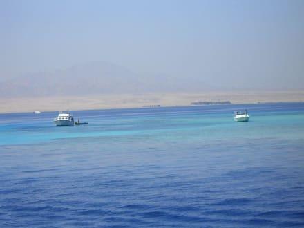 Fahrt zur Tobi Island - Tobia Island