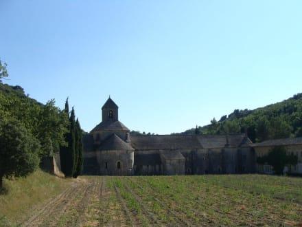 Tempel/Kirche/Grabmal - Abtei Sénanque