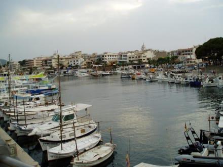 Blick vom Hafen - Yachthafen Cala Ratjada