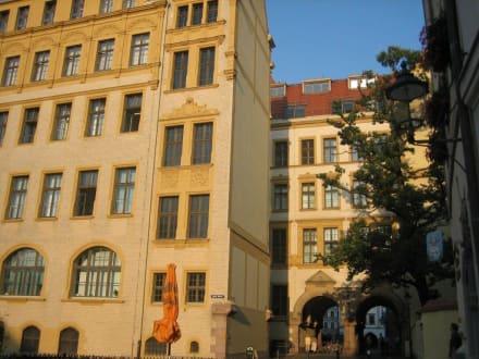 Wunderschön restaurierte Bürgerhäuser - Altstadt Görlitz
