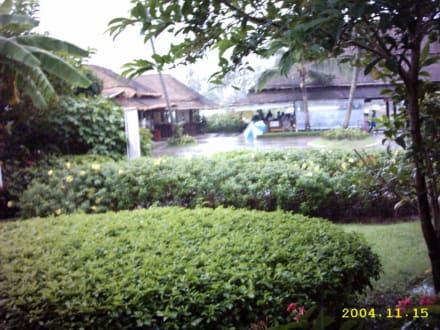 Gebaeude im Flughafen - Flughafen Koh Samui (USM)