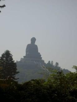 Big Buddha - Tian Tan Buddha -  Größter sitzender Buddha