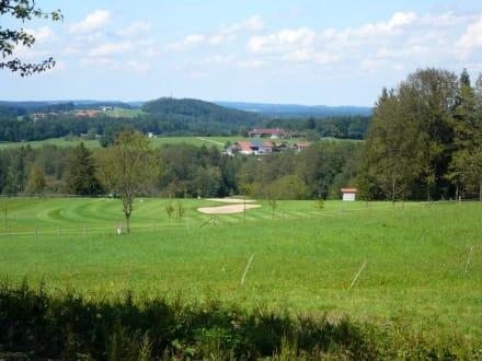 Golfplatz Prien in unmittelbarer Nachbarschaft - Seimehof