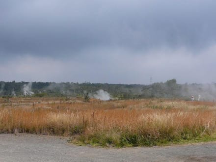 Steam Vents - Volcanoes National Park