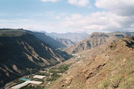 Barranco del Mogan - Gran Canaria - Bergwelt