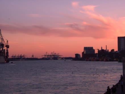 Abendstimmung im Hamburger Hafen - Hafen Hamburg