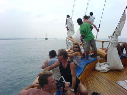 Delfine in Sicht?! - Bootstour Calypso Colakli