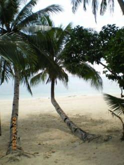 Traumstrände - Inselrundfahrt White Beach