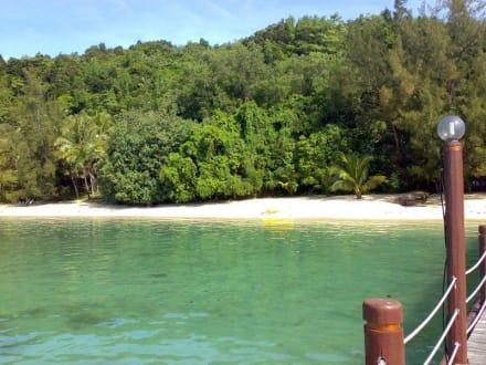 Strand/Küste/Hafen - Manukan Island