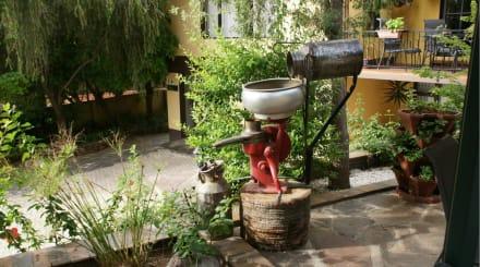 Blick in den Garten - Maison Ambre