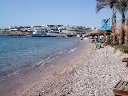 Sharm el Sheik - Sharks Bay - Sharks Bay