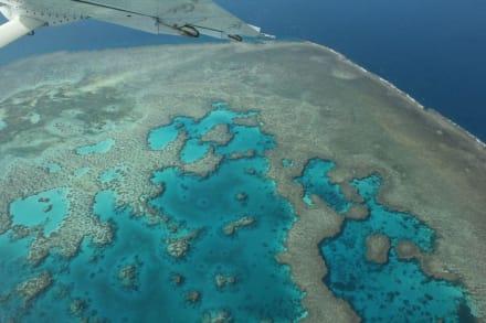 Flug über Great Barrier Reef - Flug über Great Barrier Reef