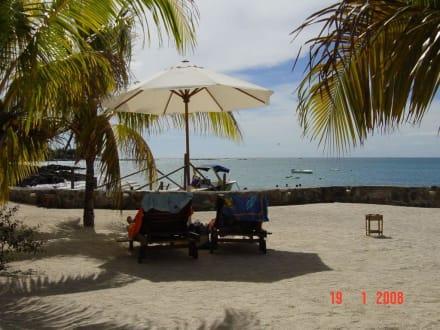 Hibiscus Resort And Spa Mauritius Hibiscus Beach Resort Spa in