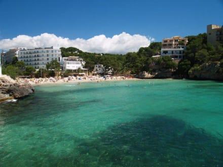 Strand/Küste/Hafen - Bucht von Cala Santanyi