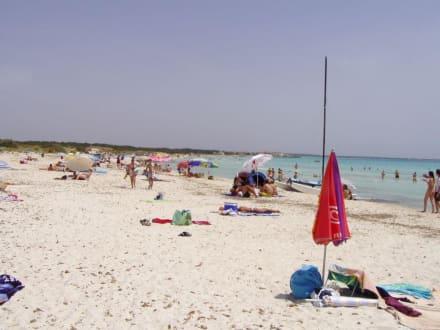 Strand von Sa Rapita - Strand Sa Rapita