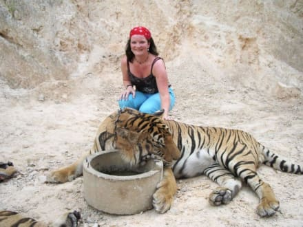 Ich und der Tiger - Tigertempel