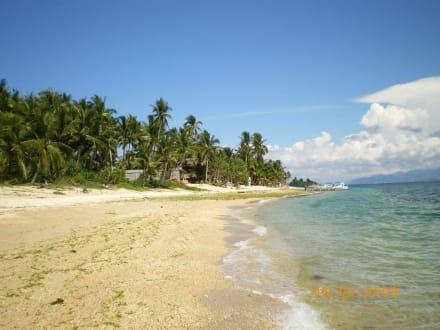 Carabao - Inselrundfahrt White Beach