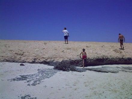 Barrakuda - Landausflug - Drehort Apollo 11 - Schnorcheln Hurghada