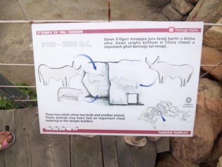 Erklärungstafel zu den Reliefs - Tempelanlage von Tarxien