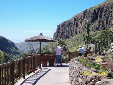 Palmitos Park Maspalomas - Palmitos Park