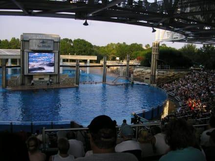 Sea World - Shamu Stadium - Sea World